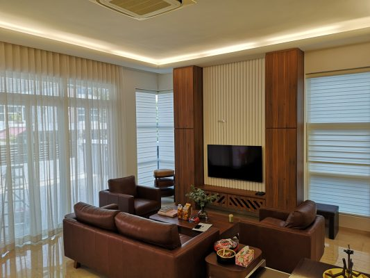 Living Room with Translucent Curtain